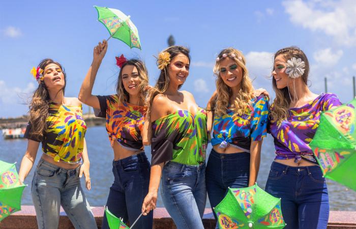 Modelos das camisetas para o camarote foram reveladas nesta segunda-feira (21). Foto: Moove Comunicação/Divulgação