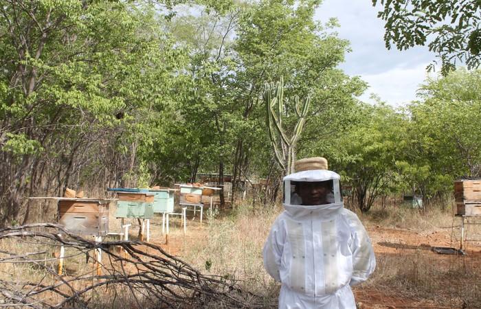Presidente da associação de agricultores, Luiz Siqueira cria abelhas no meio da caatinga, no Sítio Tamboril. Foto: Roberto Arrais/Divulgação  (Foto: Roberto Arrais/Divulgação )