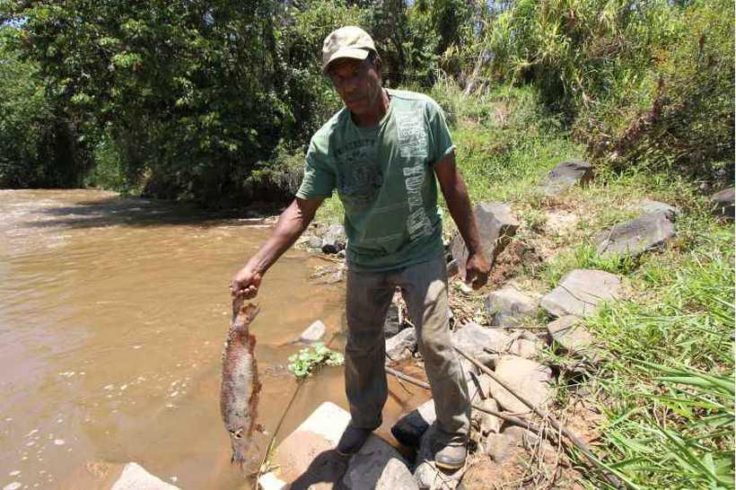 Morador observa peixe morto no Rio Paraopeba: ajuda do governo a famílias afetadas pelo desastre. Foto: Edesio Ferreira/Estado de Minas