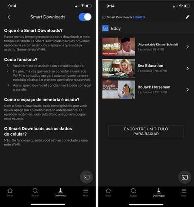 Netflix divulgou aos usuários como funciona o recurso smart downloads. Foto: Netflix/Divulgação