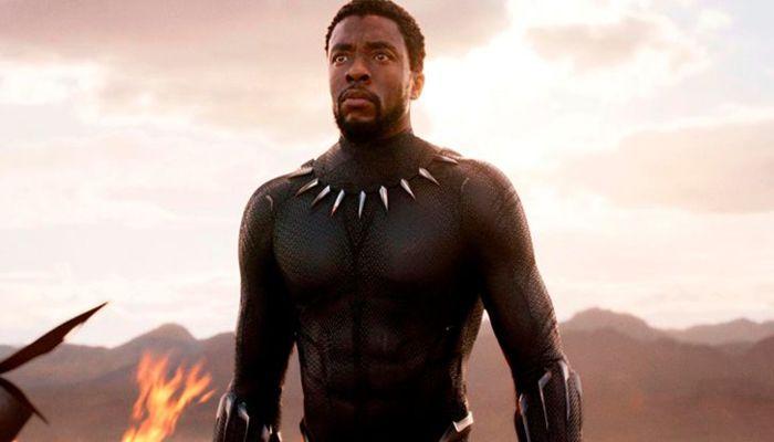 Chadwick Boseman em Pantera Negra. Foto: Reprodução/Marvel