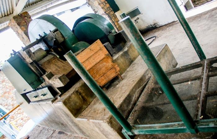 O segundo passo para a produção da cachaça é a moenda. Foto: Chico Andrade/SeturPE
