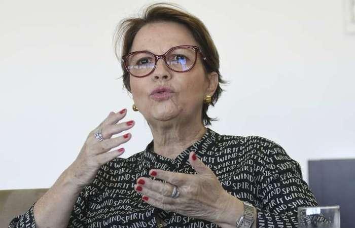 Tereza Cristina, ministra da Agricultura: reunião com caminhoneiros. Foto: Ed Alves/CB/D.A Press -
