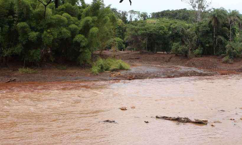 Lama da Vale em Brumadinho foi parar no Rio Paraopeba. Foto: Edésio Ferreira/EM/D.A PRESS