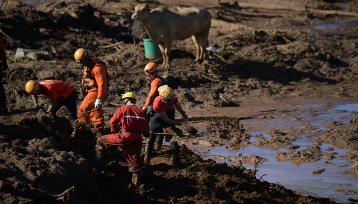 Um total de 70% da localização de vítimas foi feita com a ajuda de cães farejadores. Foto: AFP Photo
