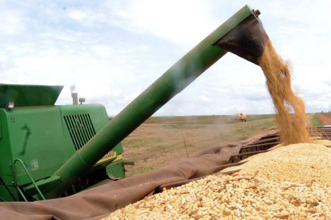 Instituto elevou a previsão para 231,5 milhões de toneladas. Foto: Arquivo/Agência Brasil