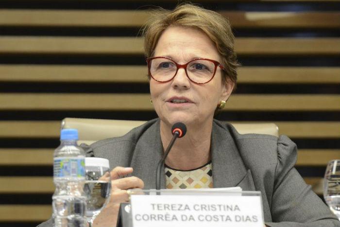 A ministra da Agricultura, Pecuária e Abastecimento, Tereza Cristina. Foto: Rovena Rosa/Agência Brasil