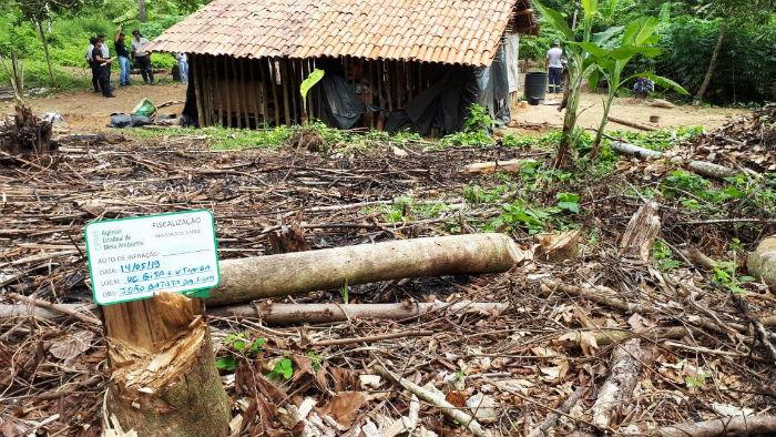 Fiscalização foi realizada na Estação Ecológica de Bita e Utinga, na RMR. Foto: CPRH / Divulgação