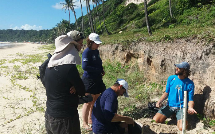 O objetivo foi capacitar os profissionais com novas técnicas de monitoramento das espécies que chegam às praias. Foto: Divulgação
