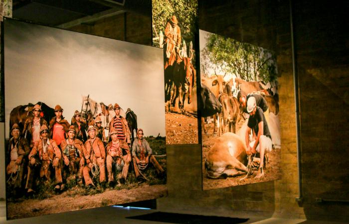 Exposição fica em cartaz até 27 de agosto. Foto: Francisco Andrade/Divulgação.