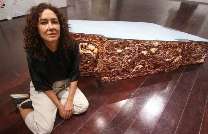 Adriana Varejão com suas ruínas de charque. Foto: Bruna Costa/DP