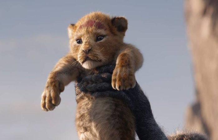 """Segundo a revista americana Mojo, o Rei Leão"""" estará em 4.725 salas ao redor do mundo. Foto: Divulgação."""