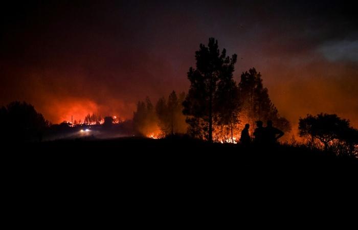 Os incêndios deixaram até agora 31 feridos, incluindo oito bombeiros. Foto: AFP.