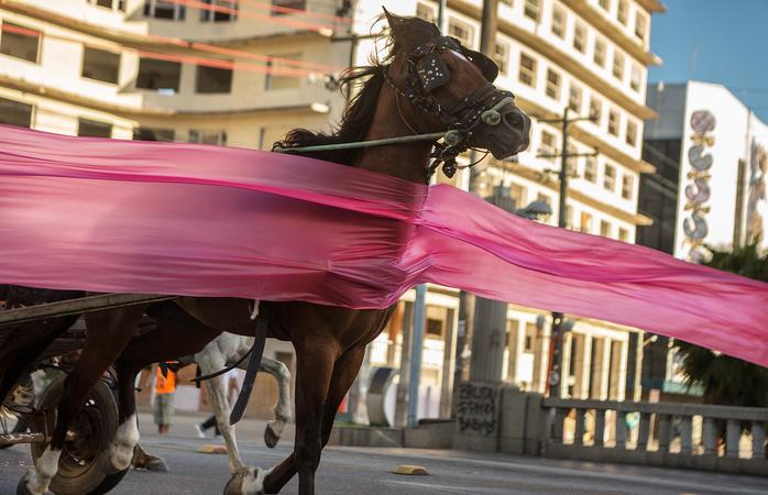 Proibição da carroça no Recife é tema de uma das fotos. Foto: Jonathas de Andrade/Divulgação