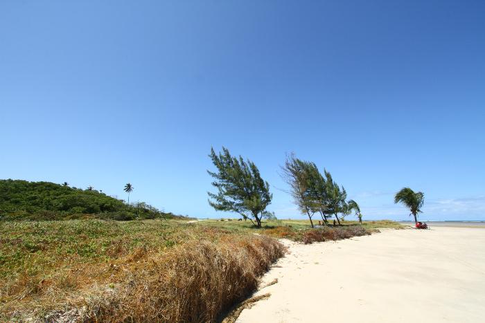 Na imagem, a praia de Maracaípe. Foto: Peu Ricardo/DP.Na imagem, a praia de Maracaípe. Foto: Peu Ricardo/DP. (Na imagem, a praia de Maracaípe. Foto: Peu Ricardo/DP.)