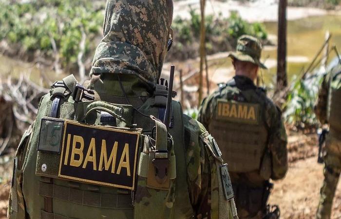 Governo Bolsonaro demite chefe do Ibama após ele anunciar que pararia queima de máquinas de garimpo - Créditos: Ibama.