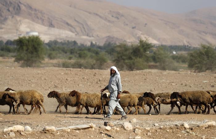 Foto: AHMAD GHARABLI / AFP