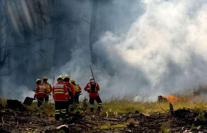 A chamada GLO ambiental autoriza o emprego das forças armadas em ações de combate a crimes ambientais e a incêndios na região amazônica - Foto: Carlos Vieira/CB/D.A Press.