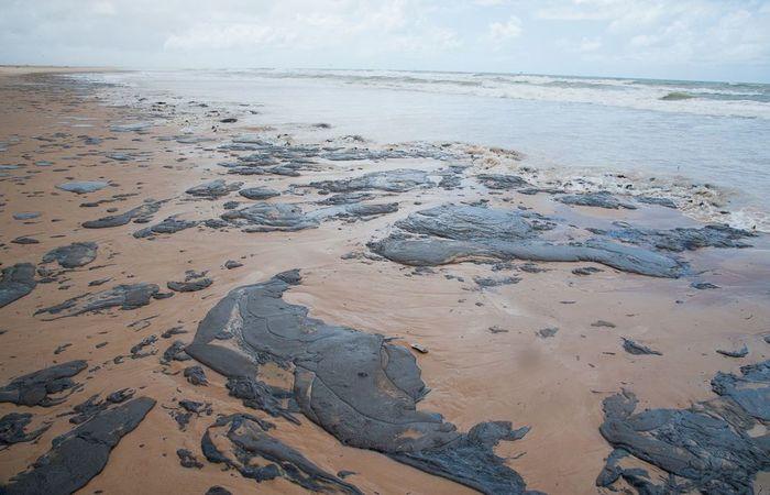 Manchas chegaram a Sergipe no final de setembro. Foto: Adema/Governo de Sergipe