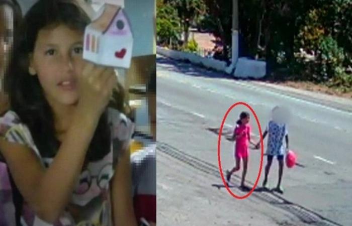 Raíssa Eloá Capareli Danona, 9 anos, foi encontrada morta amarrada em um árvore no parque Anhanguera, na zona norte de São Paulo, no último dia 29 - Foto: Reprodução.