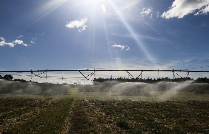 Para Tereza Cristina, os grandes produtores rurais estão cientes de que a sustentabilidade da sua produção afeta a aceitação dos seus produtos nos mercados externos - Foto: Valter Campanato/Agência Brasil.