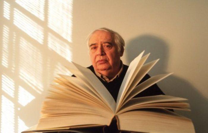 Sua avaliação esbarra com as ideias que o põem como um dos principais críticos literários dos Estados Unidos - Foto: Divulgação.