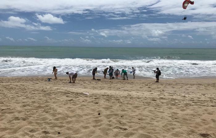Um grupo de aproximadamente 40 voluntários se reúne, com apoio do Ibama, na praia de Maracaípe para retirar manchas de óleo que chegam à areia - Foto: Marcionila Teixeira/DP