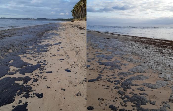 Praia do Paiva amanheceu com mancha de óleo na faixa de areia. Crédito: Cortesia