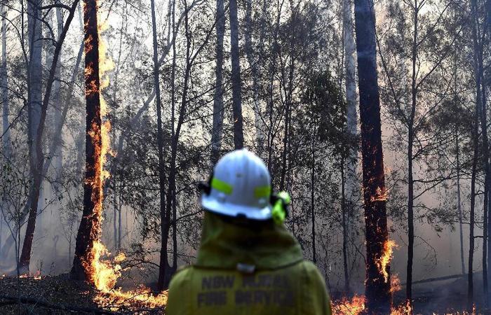 No verão, os incêndios de ervas daninhas e de várzea são frequentes na Austrália, mas este ano começaram mais cedo. (Foto: Saeed Khan/AFP)