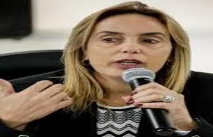 (Deputada Alessandra Vieira, presidente estadual do PSDB. Foto:Divulgação )