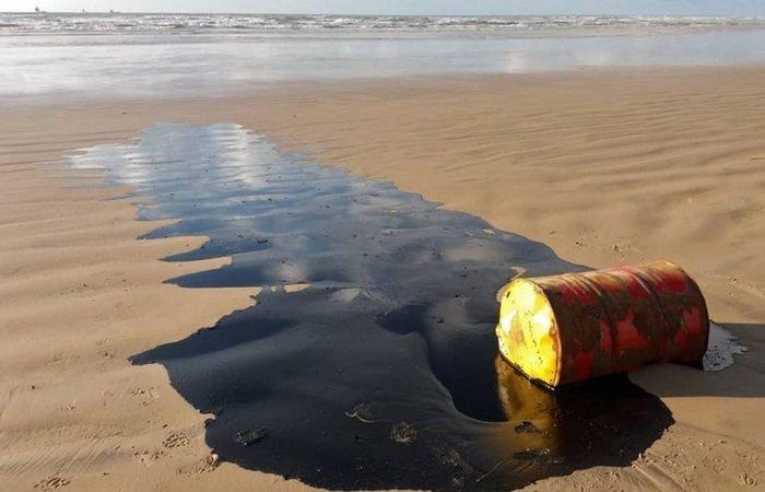 As ações de limpeza das praias do Nordeste estão concentradas em Mamucabinhas, em Pernambuco; Japaratinga, Barra de São Miguel, Coruripe, Feliz Deserto e Piaçabu, em Alagoas, e Cairu e Guaiu, na Bahia.  (Foto: AFP)