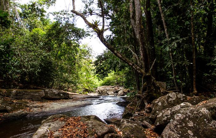 A Cachoeira do Índio fica na mesma trilha da Periperi. Foto: Samuel Calado/DP