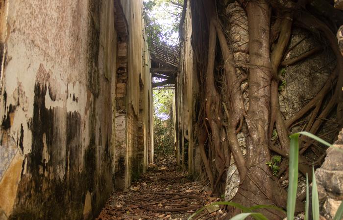Ruínas da Casa Grande de Jundiá, em Escada.  (Foto: Samuel Calado/Esp.DP)