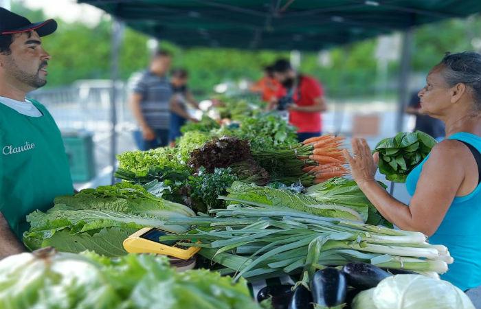 O estado possui, atualmente, 110 feiras orgânicas cadastradas, segundo levantamento da Secretaria de Desenvolvimento Agrário (SDA) (Foto: Divulgação)