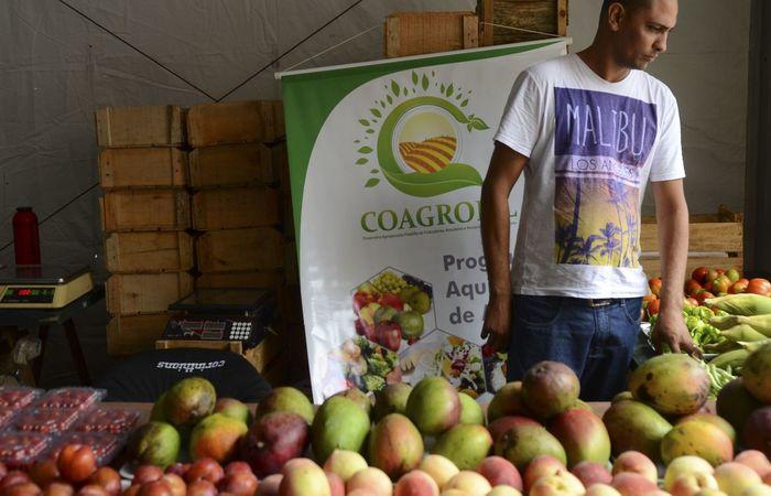 Prazo vale para declarações vencidas de 25 de março a 31 de dezembro. ( Foto: Rovena Rosa/Agência Brasil)