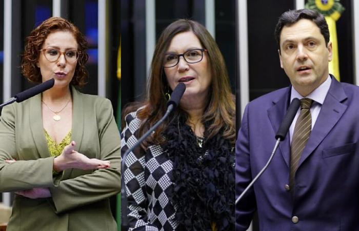 Deputados federais Carla Zambelli (PSL-SP), Bia Kicis (PSL-DF) e Luiz Phillipe Orleans e Bragança (PSL-SP).  (Foto: Divulgação/Agência Brasil)