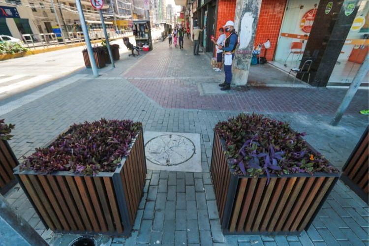 Com mais espaço para pedestre nas calçadas, avenida foi arborizada (Tarciso Augusto/ DP Foto)