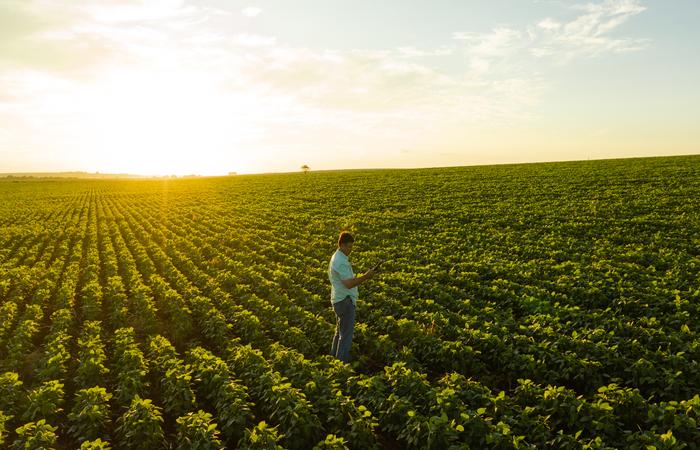 Já foi promovida a conectividade para mais de 5,1 milhões de hectares de áreas rurais no Brasil. (Foto: ConectarAGRO/Divulgação)