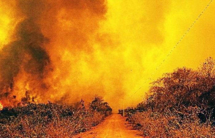 Dados consolidados do Inpe apontam que o bioma, que arde em chamas, registrou 14.489 queimadas de 1º de janeiro até 12 de setembro, contra 4.660 no mesmo período do ano passado. Verbas diminuirão em 2021 (Foto: Mayke Toscano/Secom-MT)