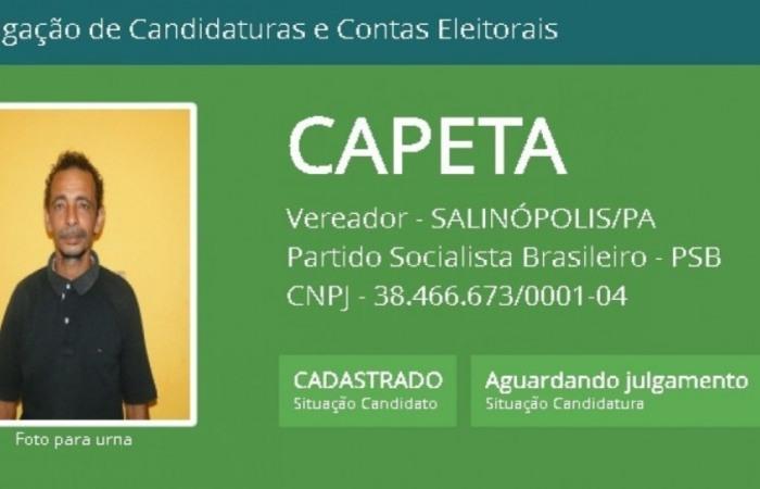 Nomes curiosos das eleições municipais (Foto: Reprodução/TSE)