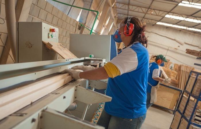 A unidade vai produzir colchões, estofados e espumas e vai funcionar no Polo Empresarial de Escada. (Foto: Orion Estofados/Reprodução)