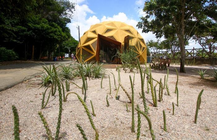 (Arena Arbor, inaugurada no Jardim Botânico do Recife. Foto: Bruna Costa/Esp.DP )