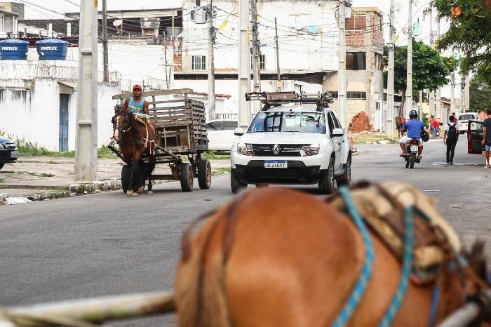Flagrante de circulação de carroceiros no bairro do Arruda, Zona Norte do Recife. (Foto: Bruna Costa / Esp. DP FOTO)
