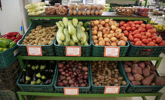 Batata inglesa e coentro estão entre produtos que registraram maiores altas nos preços. (Foto: Luiz Costa/SMCS/Divulgação)