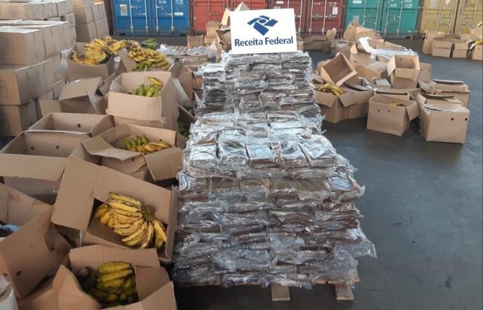 Os criminosos camuflavam drogas em cargas de bananas. (Foto: PF/ Divulgação)