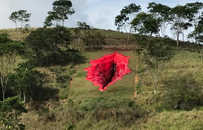 A land art Diva foi realizada em uma montanha da Usina das Artes, em Água Preta (Foto: Divulgação)
