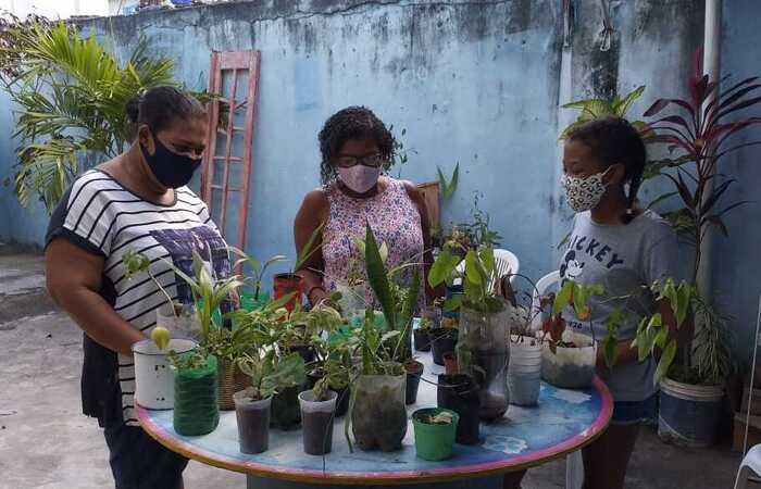 (Foto: Divulgação/Rede pela Transição Agroecológica)