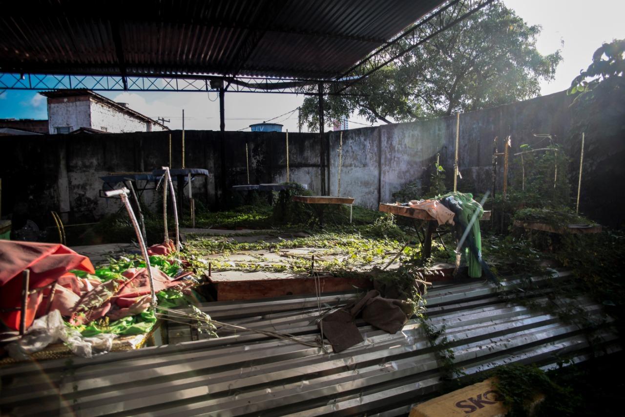 Sem recursos, pátio de alegorias está tomado pela vegetação (Foto: Arnaldo Sete/Esp. DP)