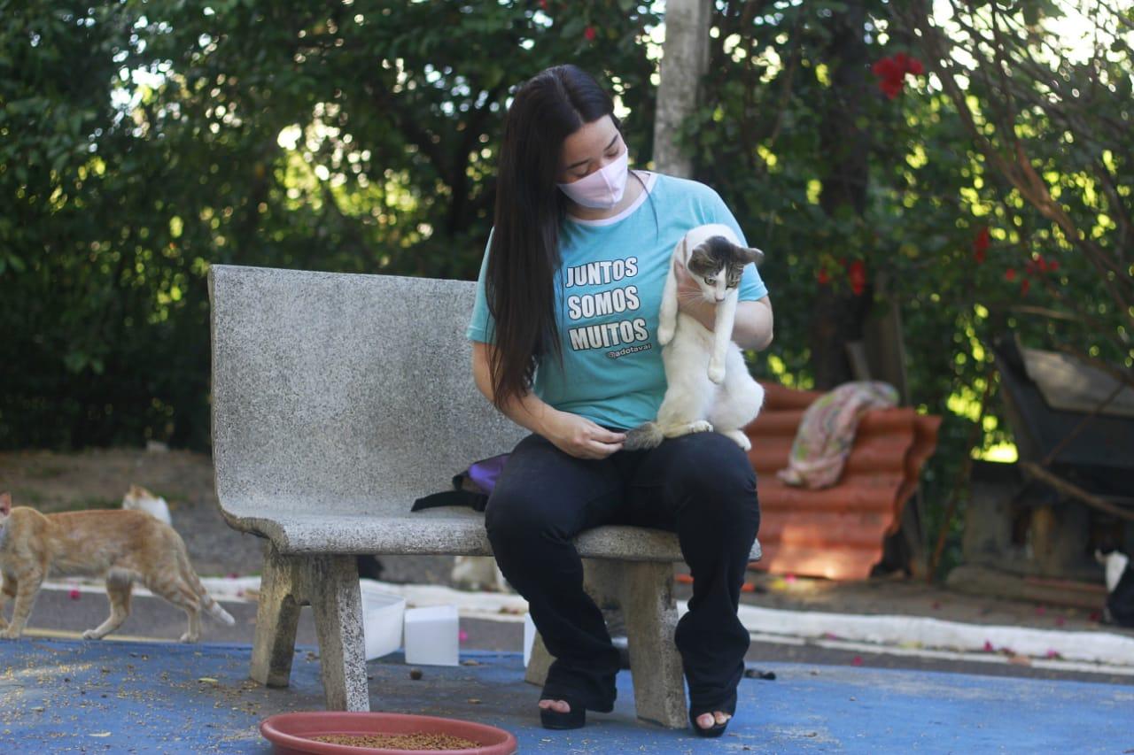 Milena usa o alcance da internet para mobilizar adoções para os gatos (Foto: Rômulo Chico/Esp. DP)