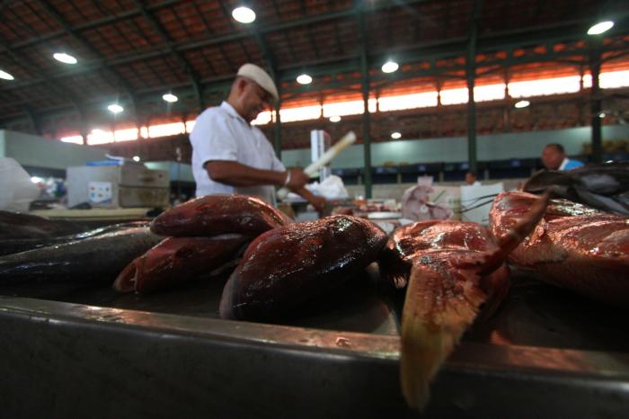 Segundo especialistas, doença não provoca alteração na aparência ou sabor dos peixes (Foto: Peu Ricardo/DP)